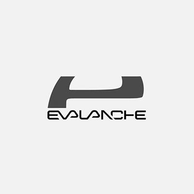 01_Evalanche