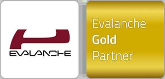 web_Evalanche_Logo-Partner