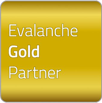 web_evalanche_Goldpartner_01_ik